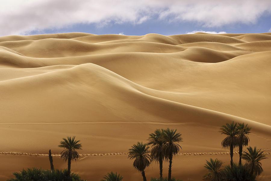Breathtaking Sand Dunes Photograph