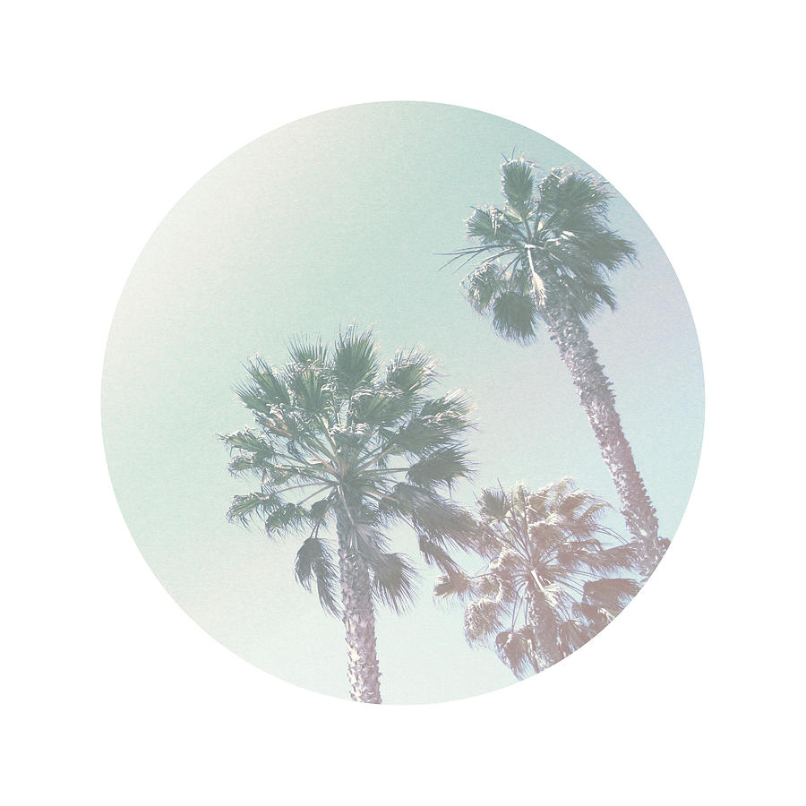 Pastel Photograph - Breezy Palm Trees- Art By Linda Woods by Linda Woods