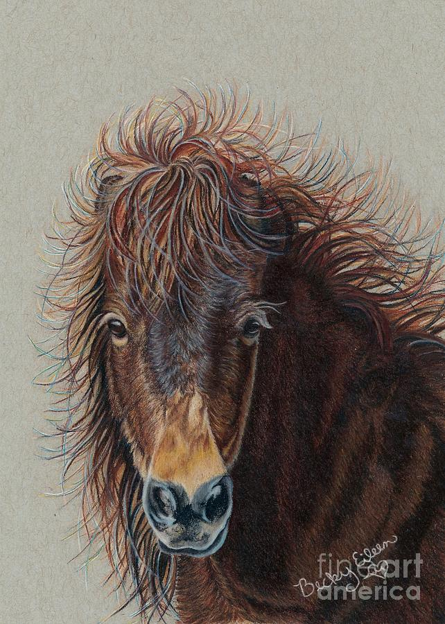 Breezy's Bad Hair Day by Becky Eileen Eller