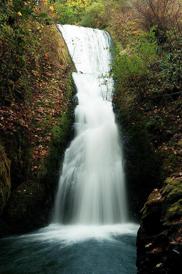Bridal Veil Falls Photograph - Bridal Veil Falls, Oregon by Norman Hall