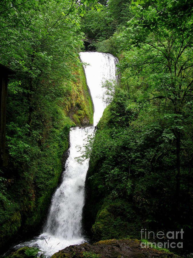 Waterfall Photograph - Bridal Veil Falls by PJ  Cloud