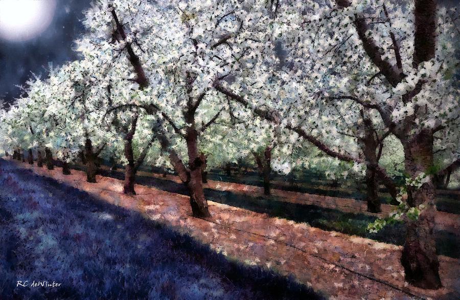 Bridal Veil Trail by RC DeWinter