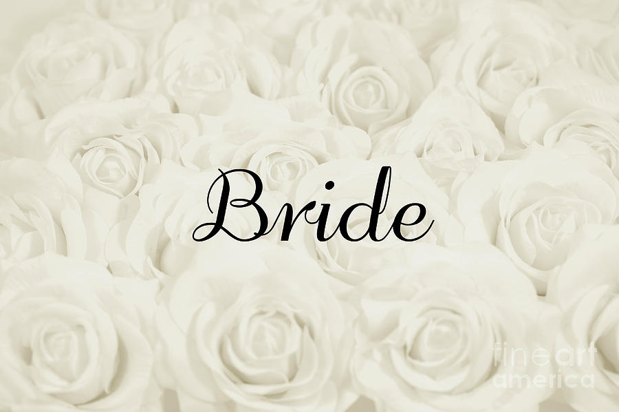 Ivory Roses Photograph - Bride Floral Design- Cream White by Lucid Mood