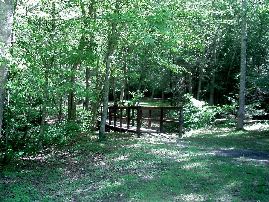 Park Photograph - Bridge In The Park by B L Qualls