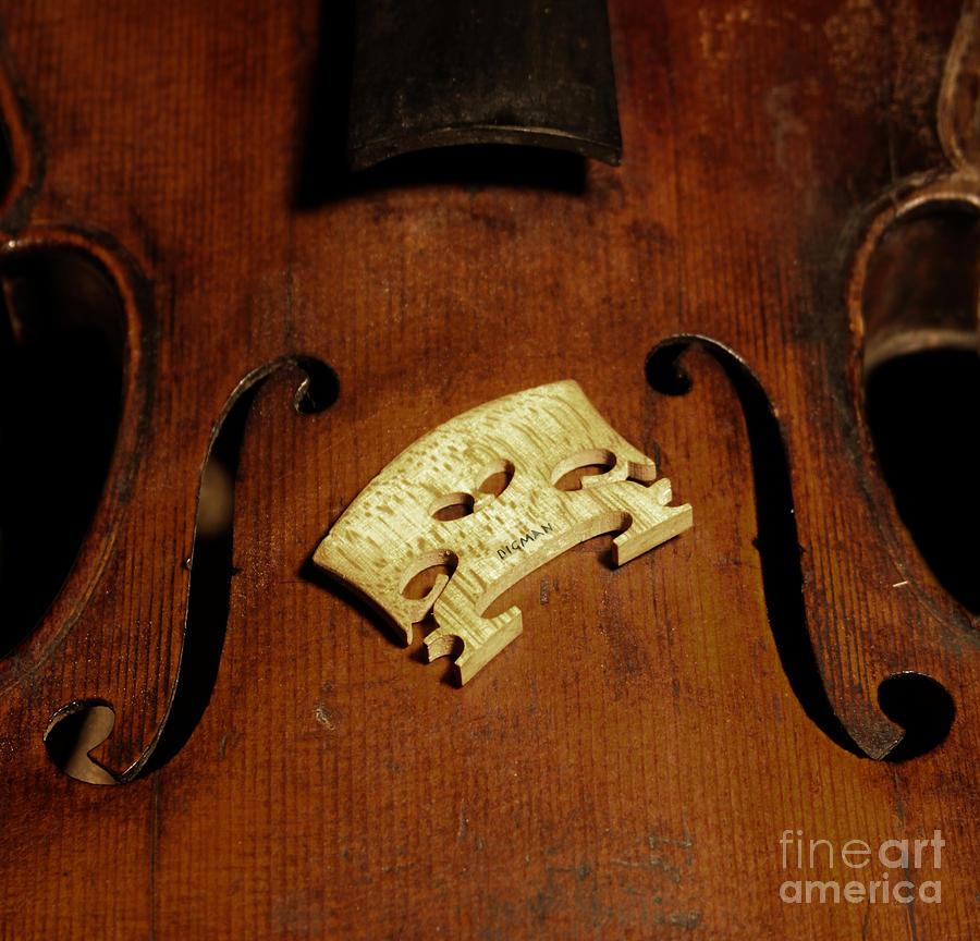 Violin Photograph - Bridge In Waiting  by Steven Digman