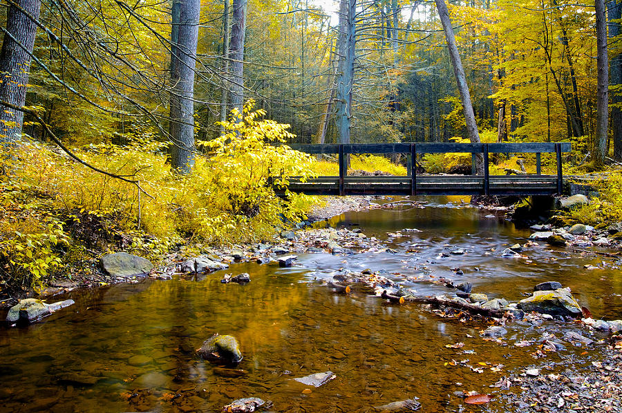 Bridge Photograph - Fall Creek by John Daly