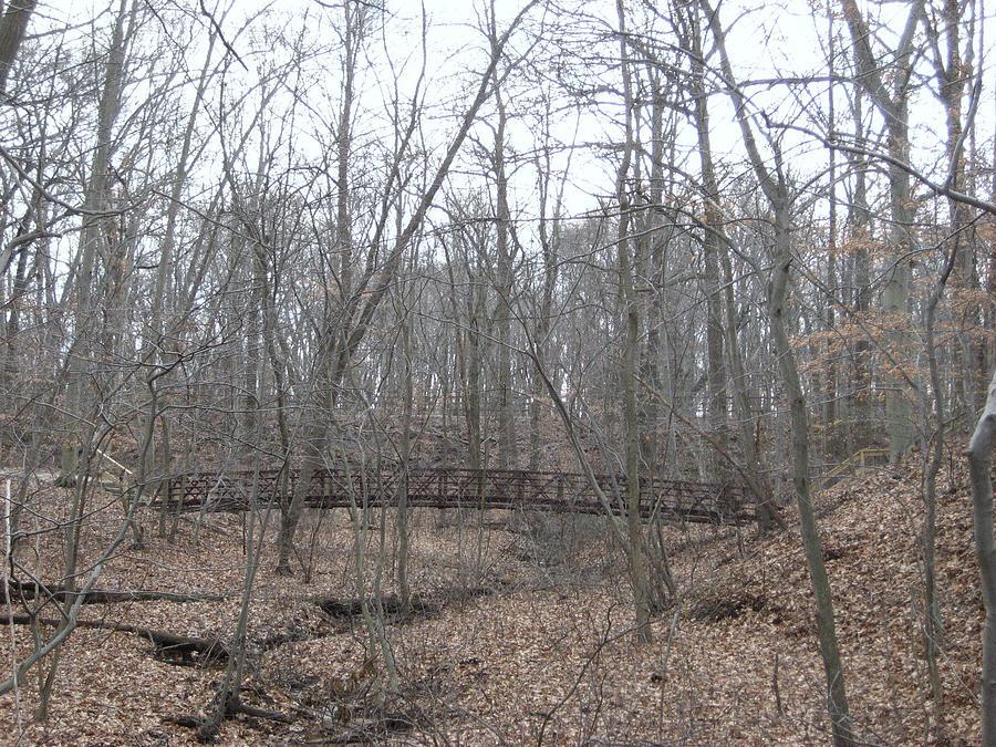 Nature Photograph - Bridge Over Stream by Jennifer  Sweet