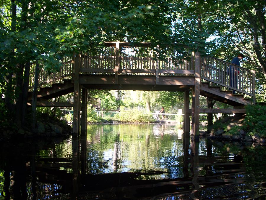 Water Photograph - Bridge Over Water by Rosanne Bartlett