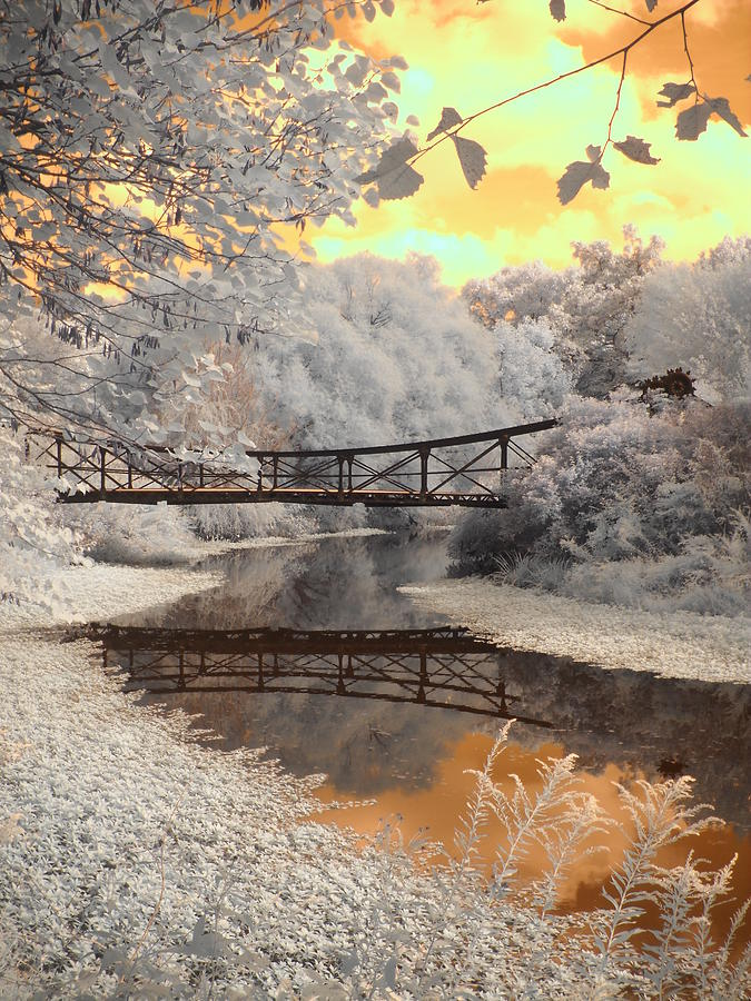Infrared Photography Photograph - Bridge Reflections by Jane Linders
