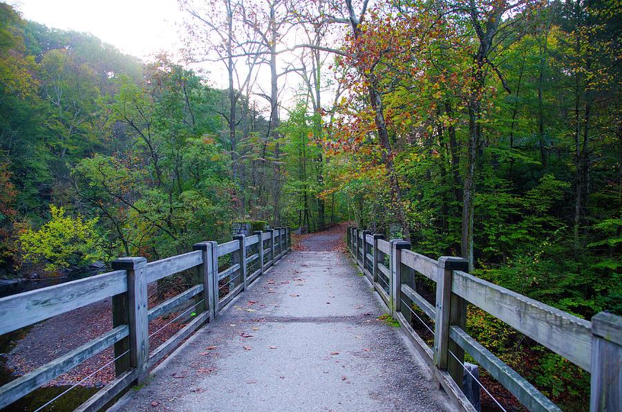 Bridge Photograph - Bridge To Paradise - Wissahickon Valley by Bill Cannon