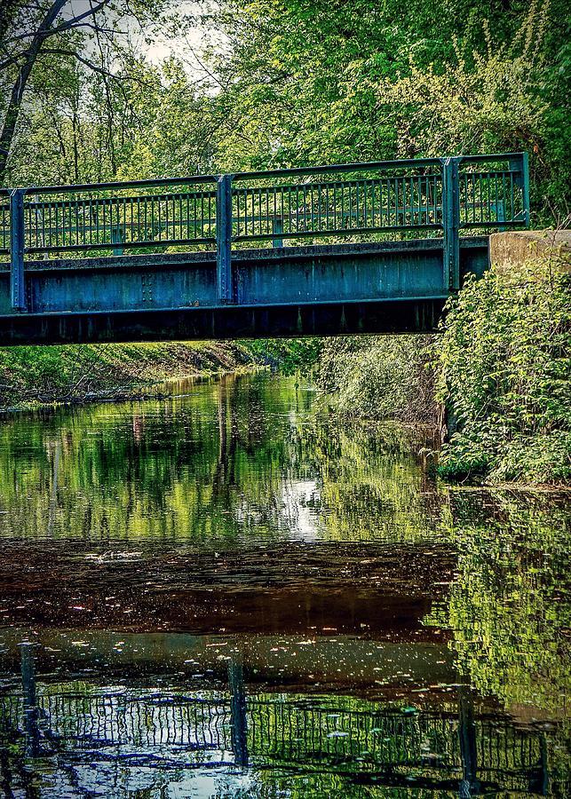 Bridging The Feeder Photograph by Kendall McKernon