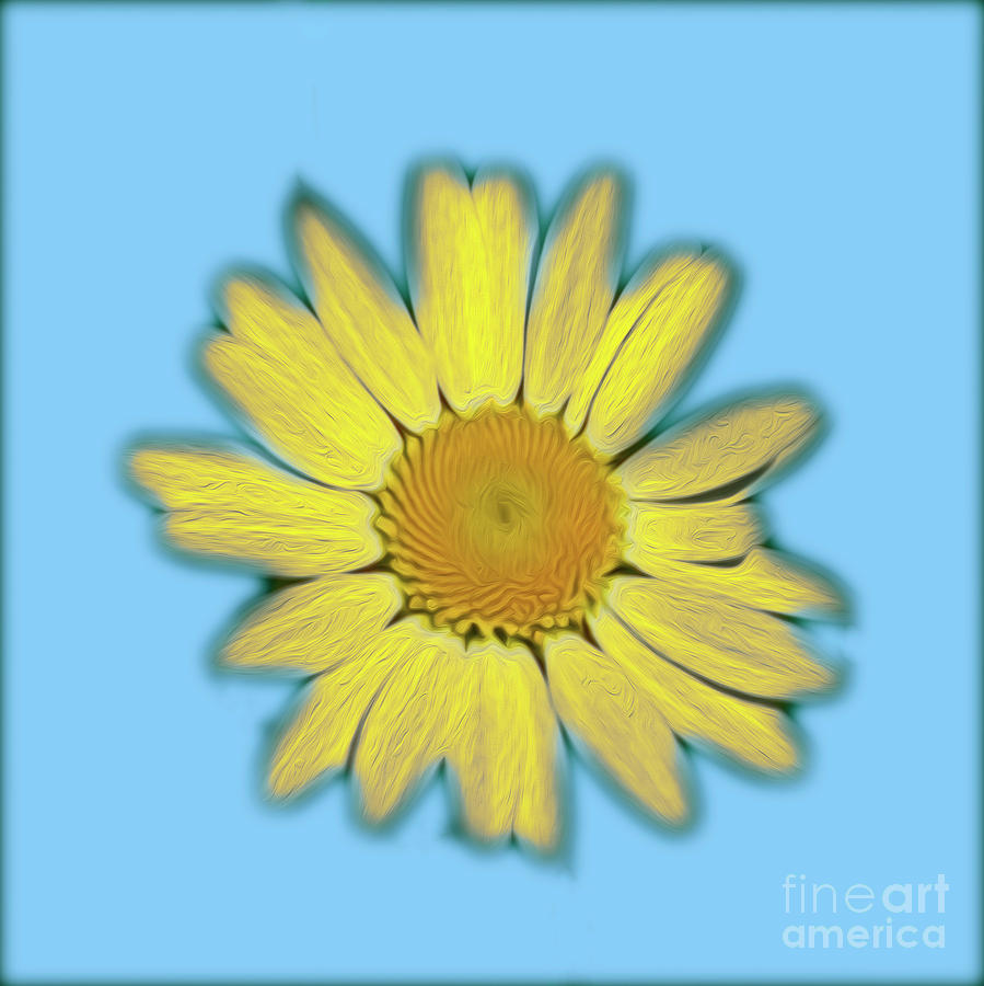 Bright Daisy Photograph by Candydash Images