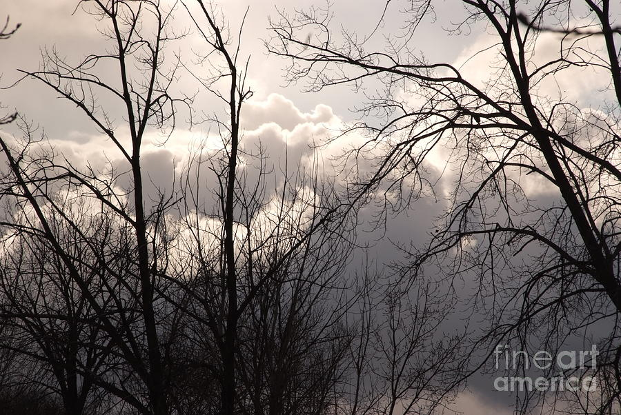Clouds Photograph - Bright Light by Tracy   Fuzie