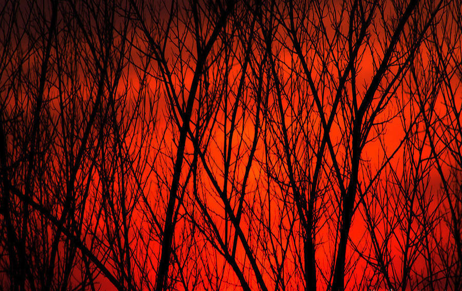 Bright Red Sunset Photograph by Kenneth Bourassa