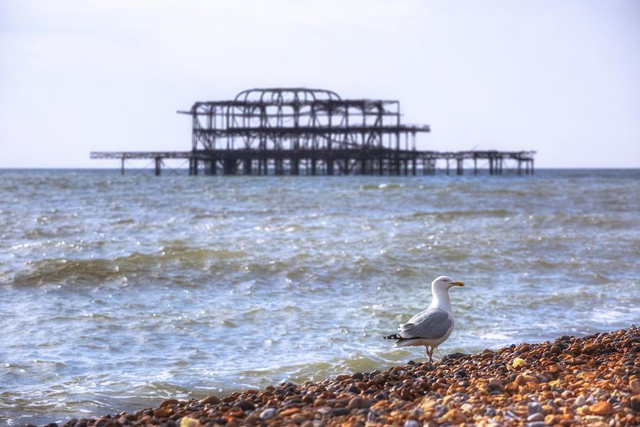 West Pier Photograph - Brighton by Joana Kruse