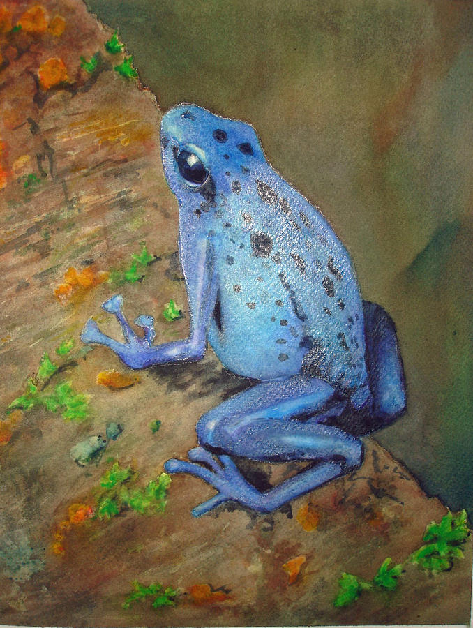 Animal Painting - Brilliant Blue Poison Dart Frog by Kerra Lindsey