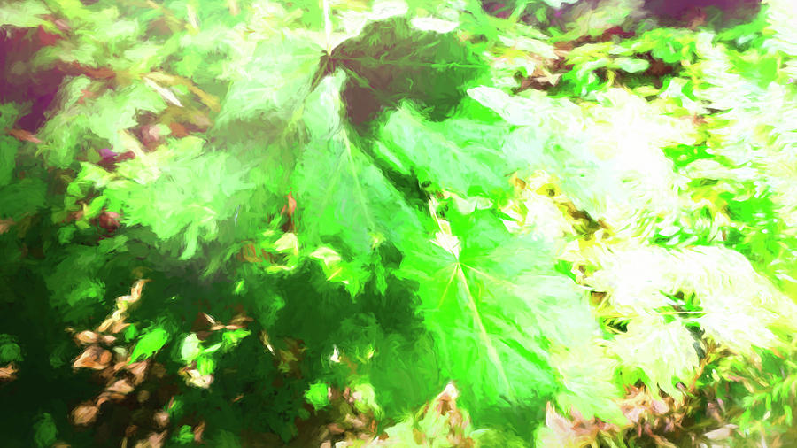 Brilliant Leaves Light and Shadow by Cathy Anderson