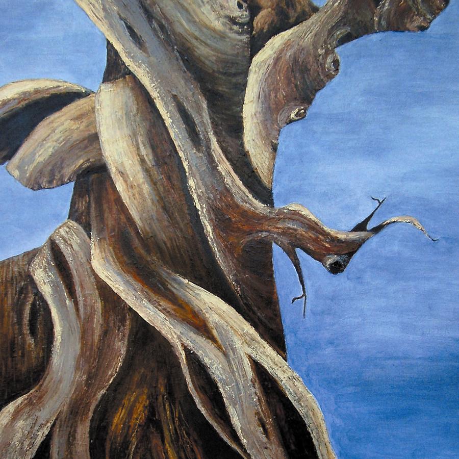 Bristlecone Painting - Bristlecone Tree No. 1 by Wanda Pepin