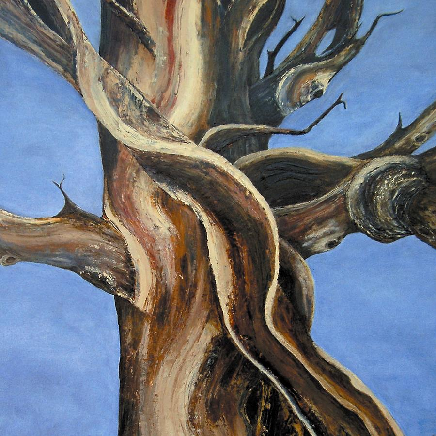 Bristlecone Painting - Bristlecone Tree No.4 by Wanda Pepin