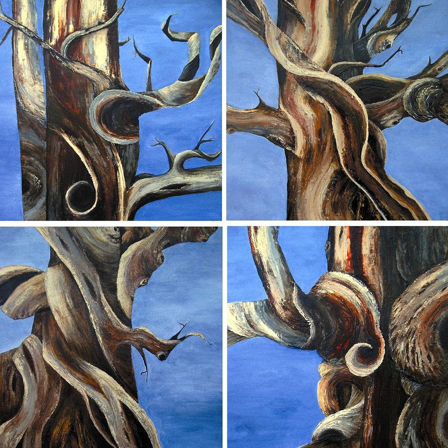 Tree Painting - Bristlecone Tree Set by Wanda Pepin