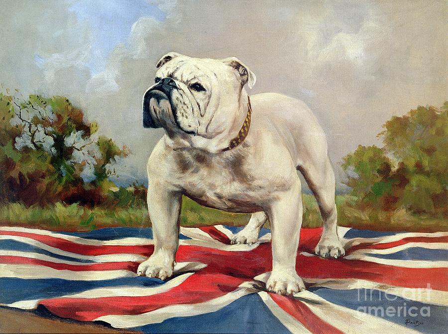 Grb; Union Jack; Dog Painting - British Bulldog by English School