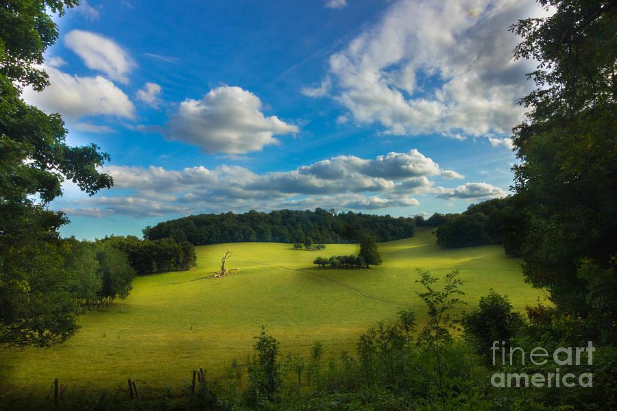 British countryside by Fabrizio Malisan