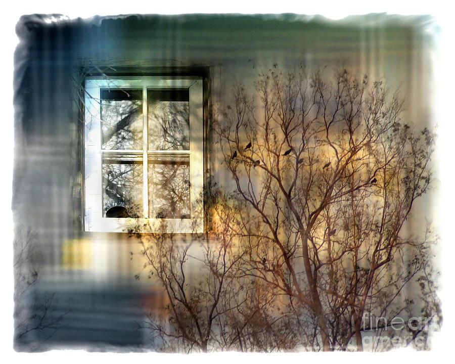Tree Digital Art - Broken Dreams by Chuck Brittenham