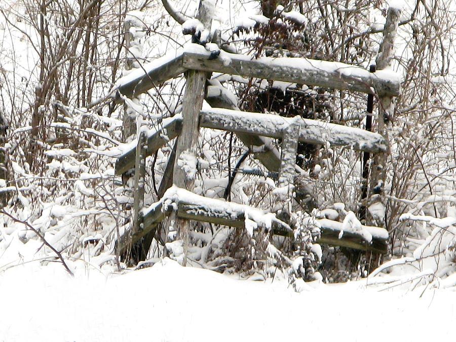 Winter Photograph - Broken Fence  by Martie DAndrea