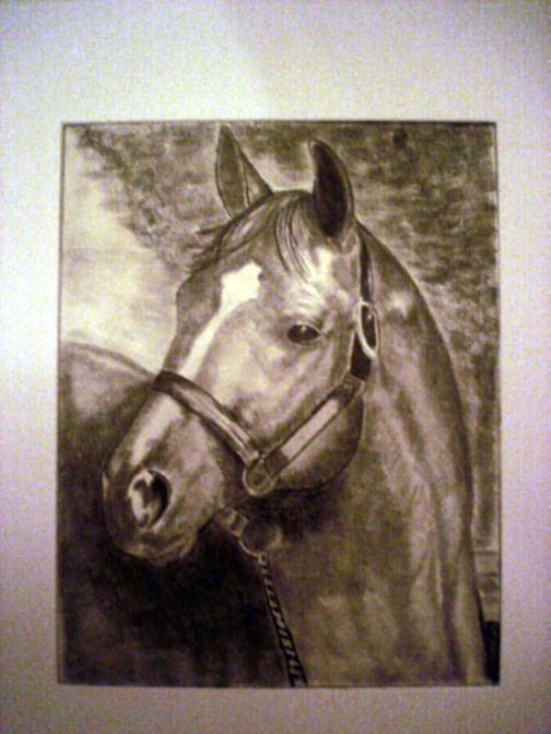 Horse Drawing - Broken Halter  by Donald Penwell