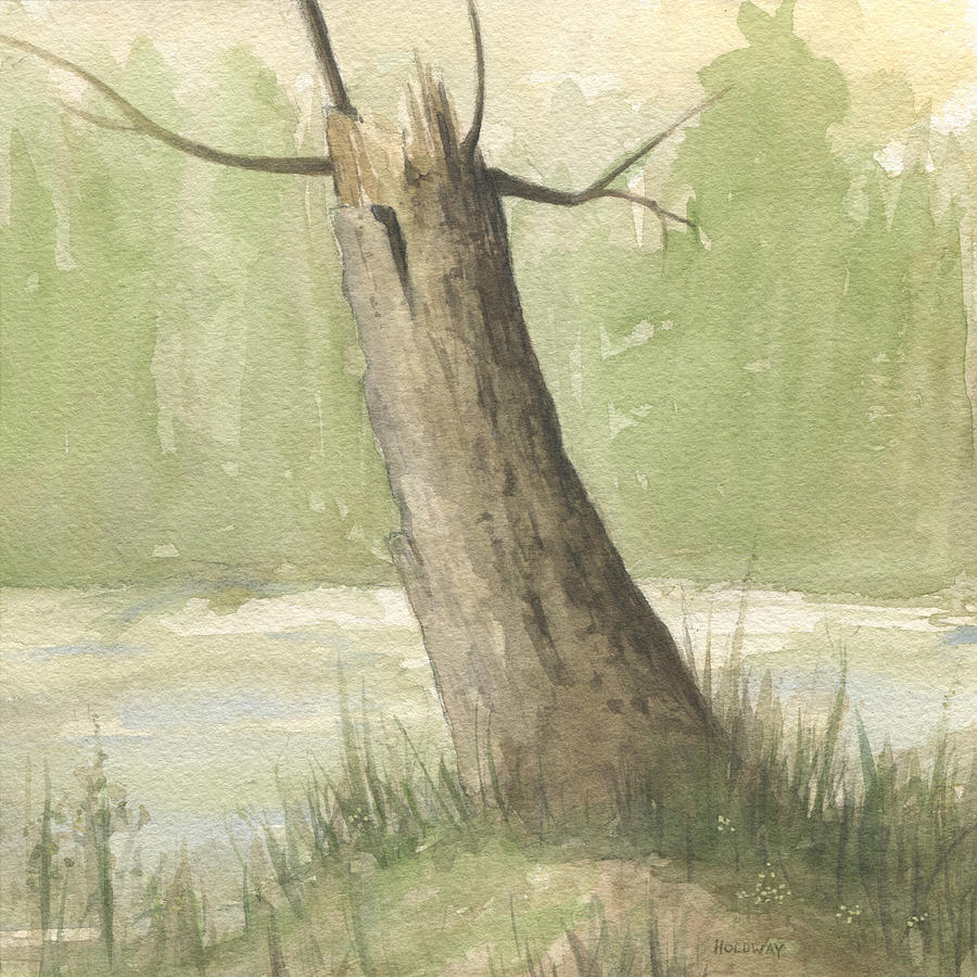Broken Tree by John Holdway