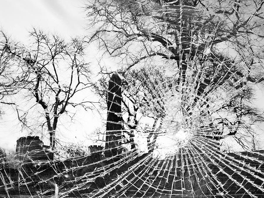 Black And White Photograph - Broken Trees by Munir Alawi