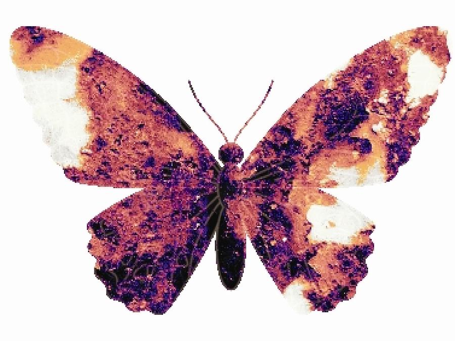 Broken Wings Digital Art