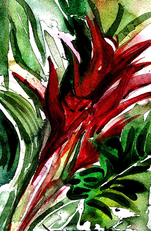 Bromelia Digital Art - Bromelia by Mindy Newman