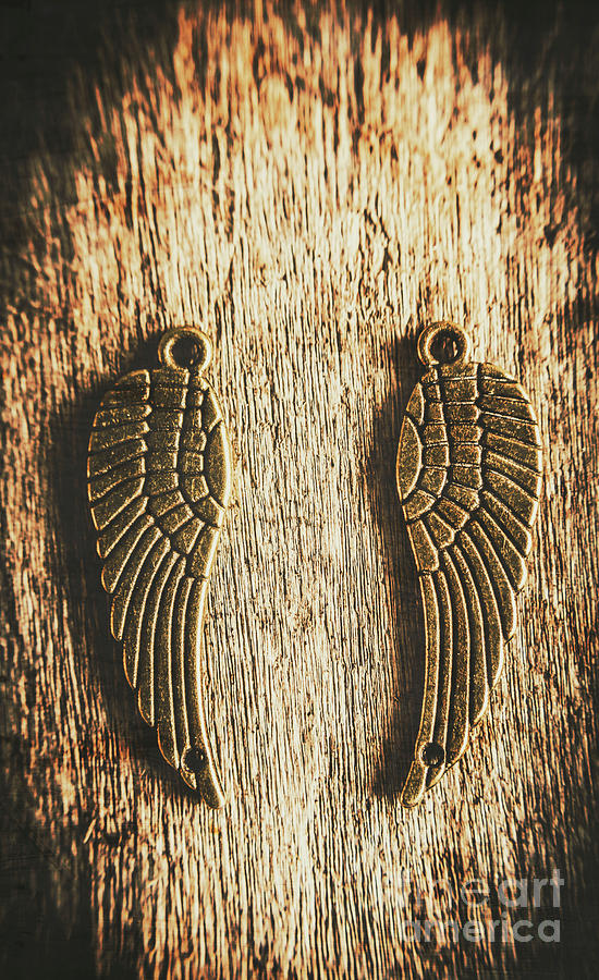 Angel Wings Photograph - Bronze Angel Wings by Jorgo Photography - Wall Art Gallery
