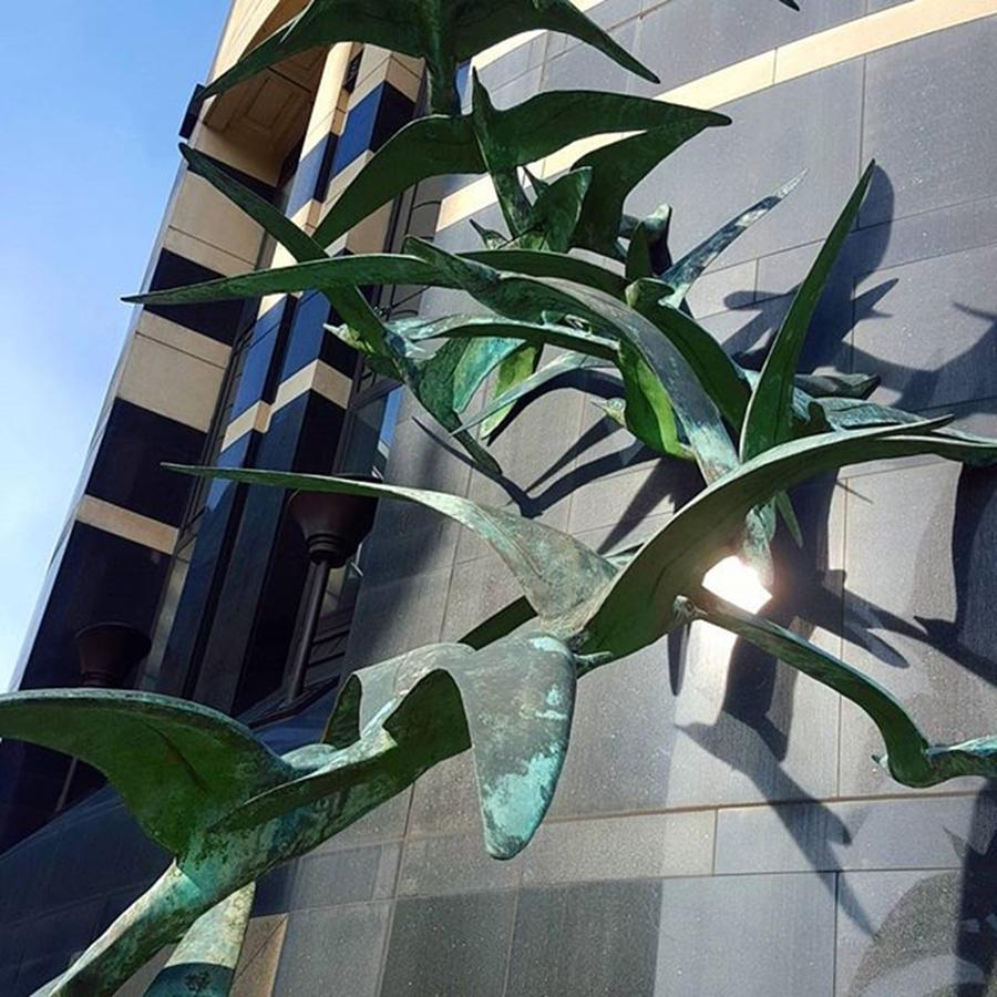 Deco Photograph - Bronze #birds Flying Up The Side Of A by Dante Harker