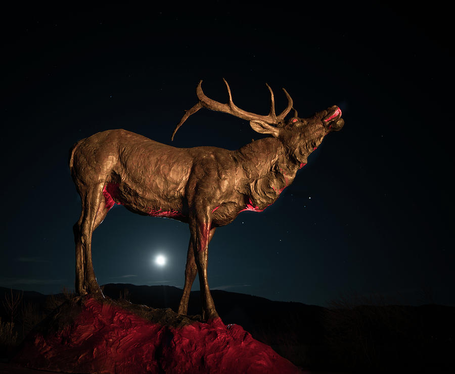Bronze Elk with Rising Moon by Hal Mitzenmacher