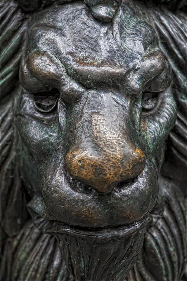 Sculpture Photograph - Bronze Lion by Robert Ullmann