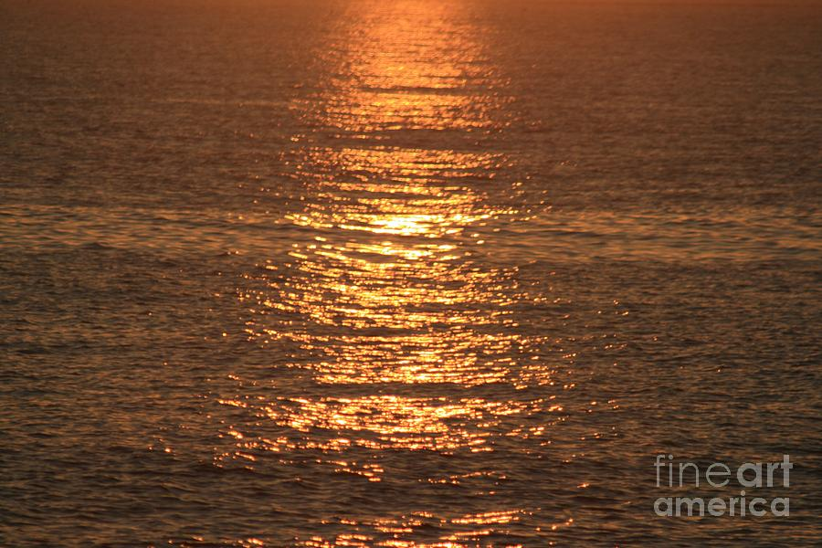 Ocean Photograph - Bronze Reflections by Nadine Rippelmeyer