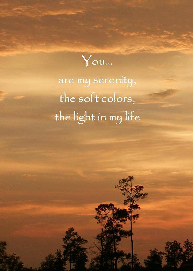 Bronzed Sunset Quote