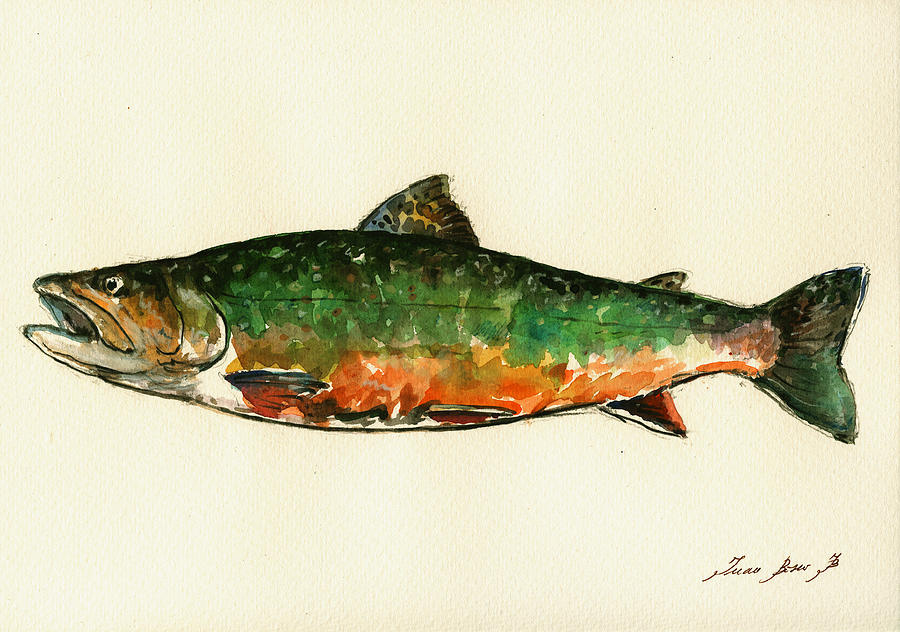 Brook Trout Painting - Brook trout by Juan  Bosco