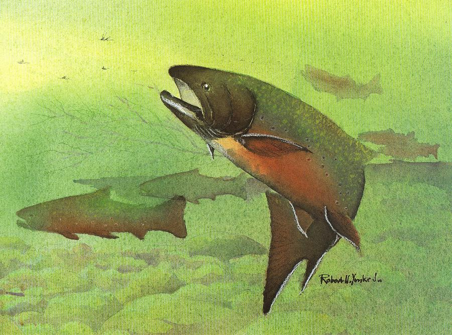 Brook Trout Painting - Brook Trout by Robert Yonke