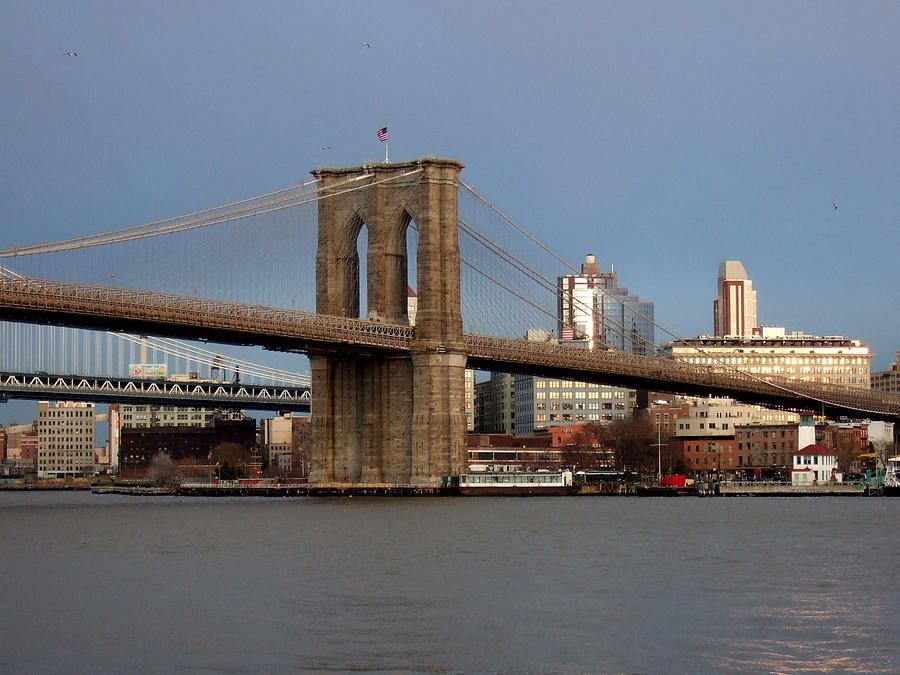 Brooklyn Bridge Photograph - Brooklyn Bridge by Anita Burgermeister