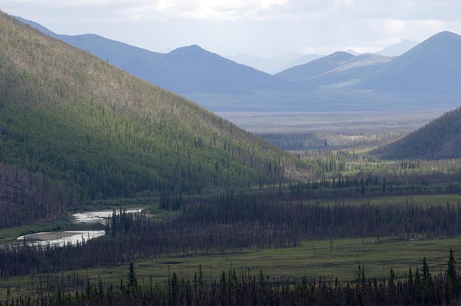 Nobody Photograph - Brooks Range, Alaska by Michael S. Quinton