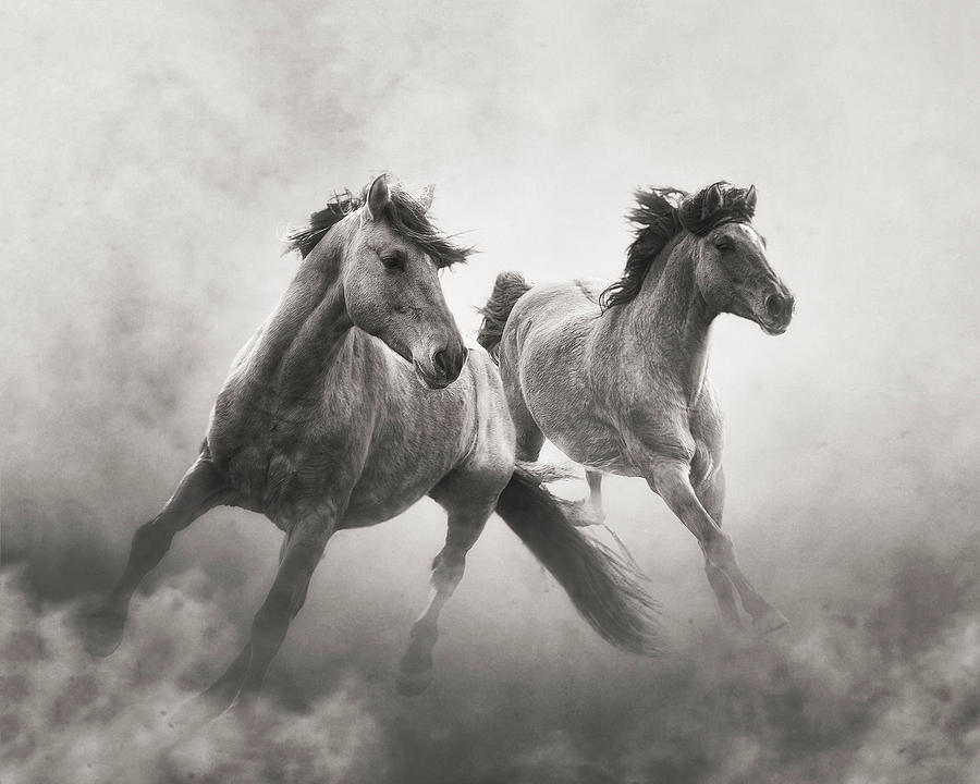Brothers of the Dust by Ron McGinnis