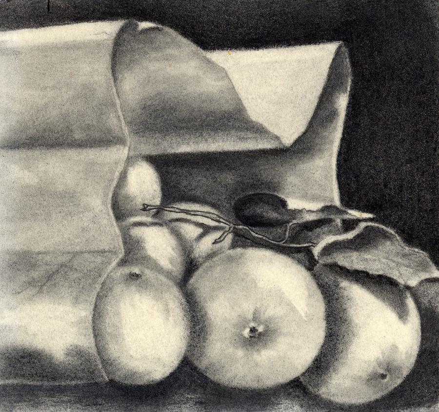 Still Life Drawing - Brown Bag by Penny Everhart