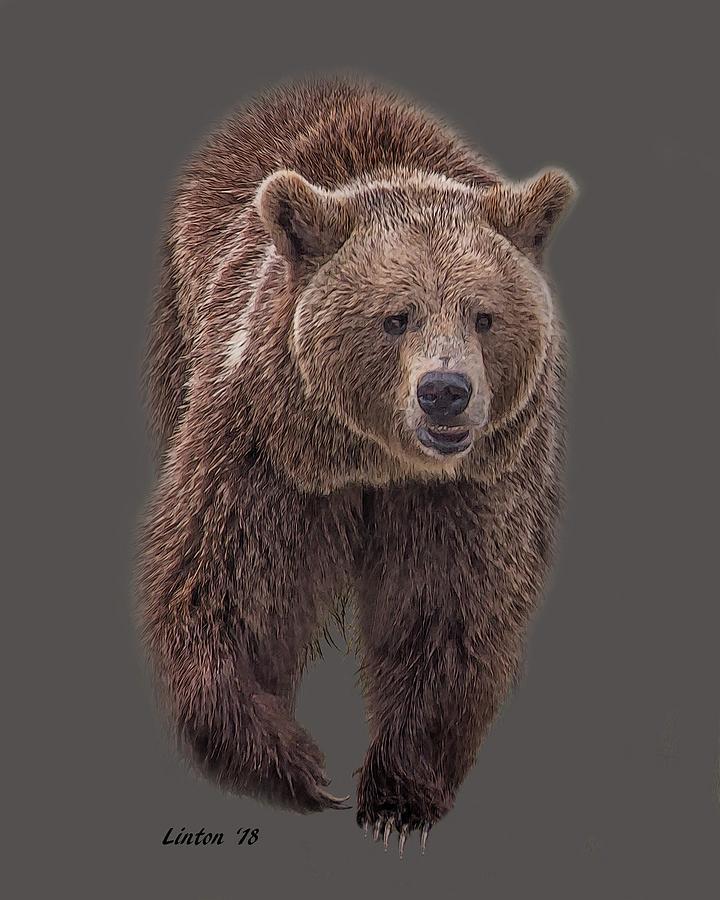 BROWN BEAR 8   by Larry Linton