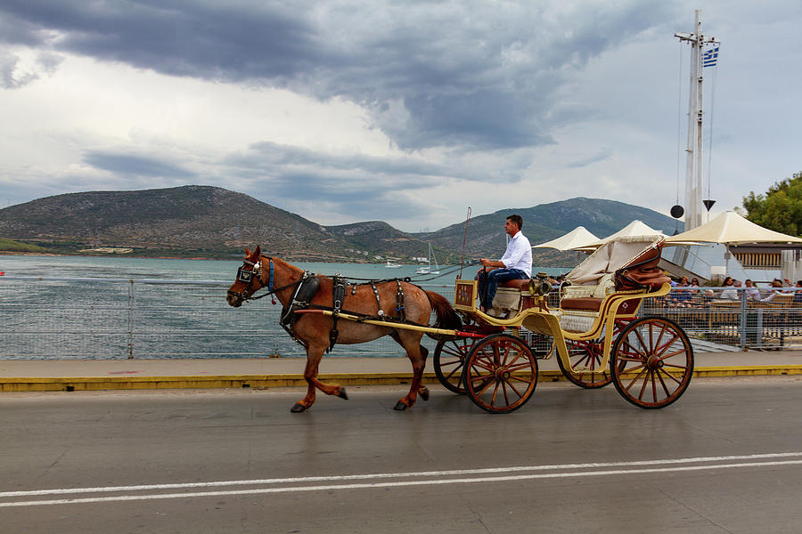 Boat Photograph - Brown Horse Drawn Carriage by Iordanis Pallikaras