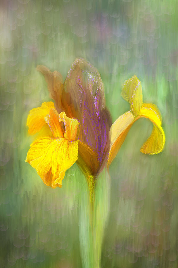 Brown Iris Painting - Brown Iris by Angela A Stanton