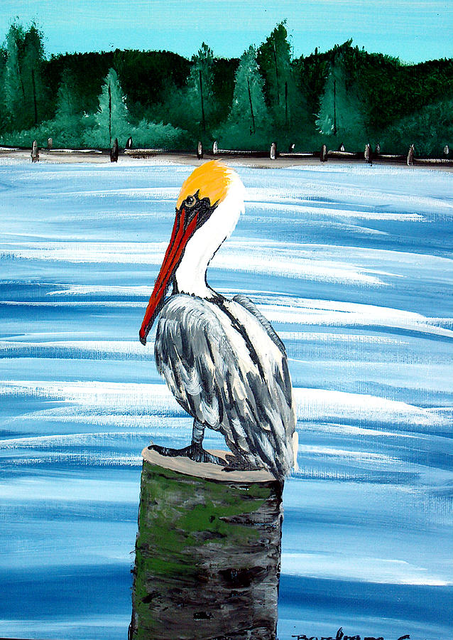 Pelican Painting - Brown Pelican by Barbara Cruz