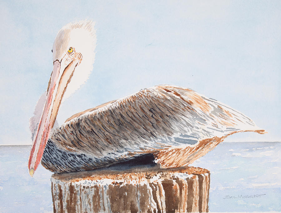 Brown Pelican Painting - Brown Pelican by Emil Morhardt